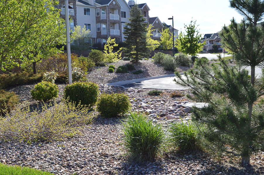 Aspen Ridge Landscape Renovation